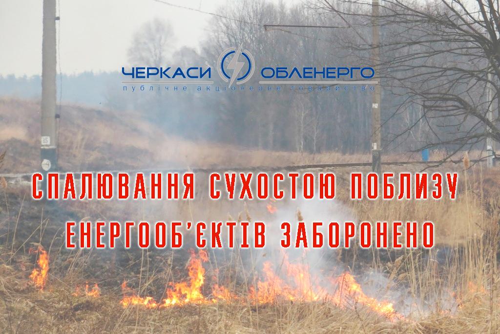 Не спалюйте сухостій в охоронних зонах
